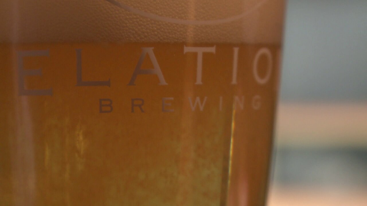 Elation Brewing.jpeg
