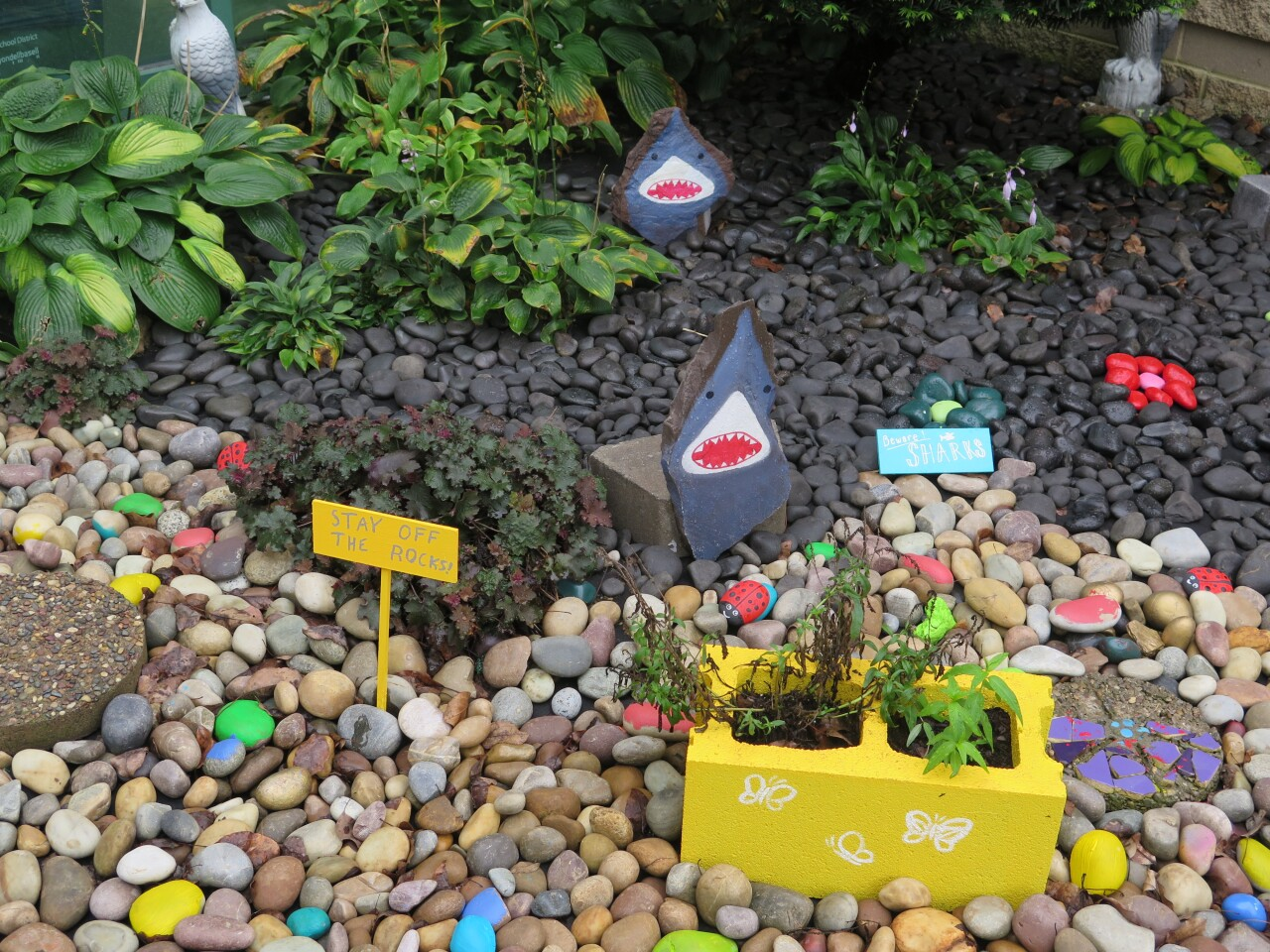 The MECC Moves rock garden includes rocks painted like sharks to warn students not to play there.