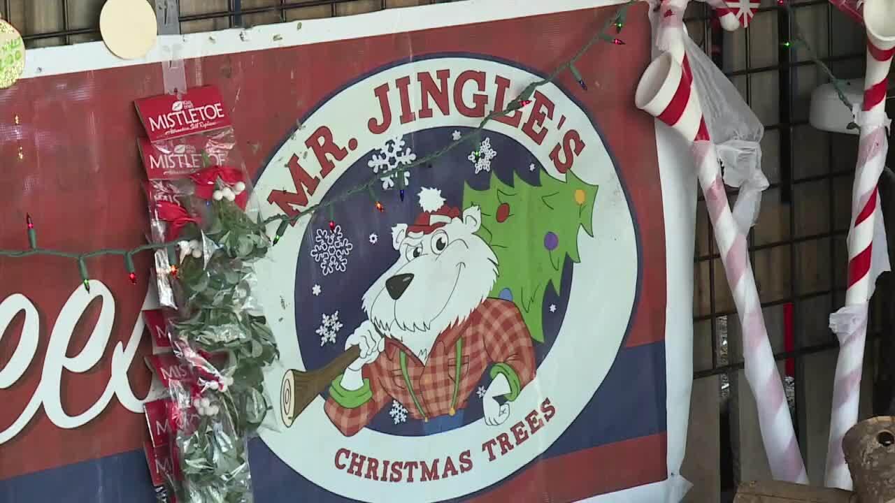 Mr. Jingle's Christmas Trees sign