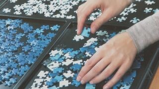 Good for the mind, jigsaw puzzle sales soar