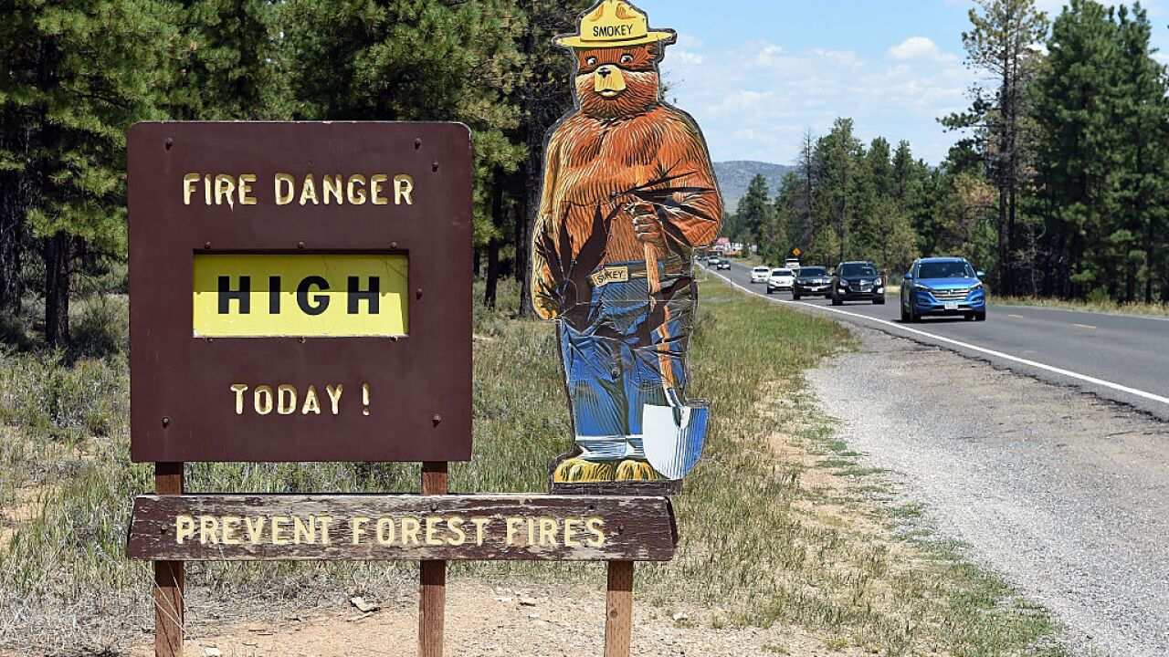 Smokey Bear turns 75-years-old