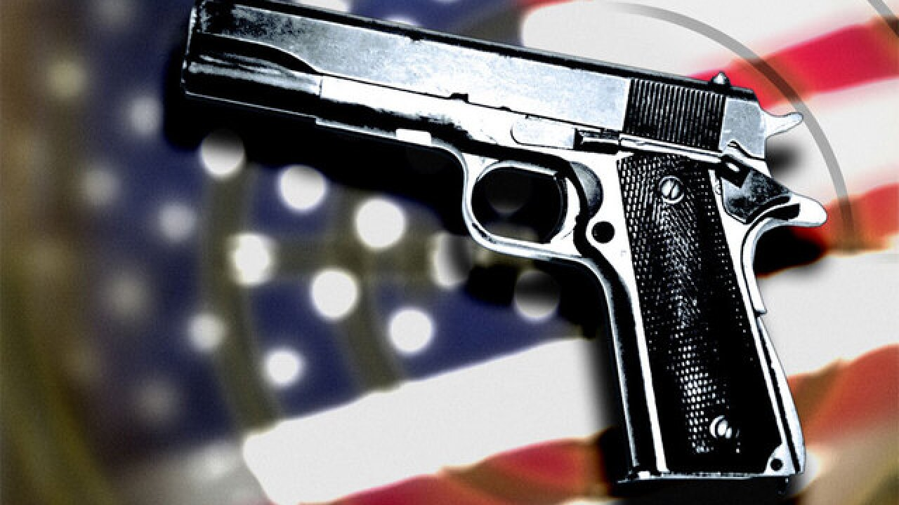 Florida cities sue state officials over gun regulations law