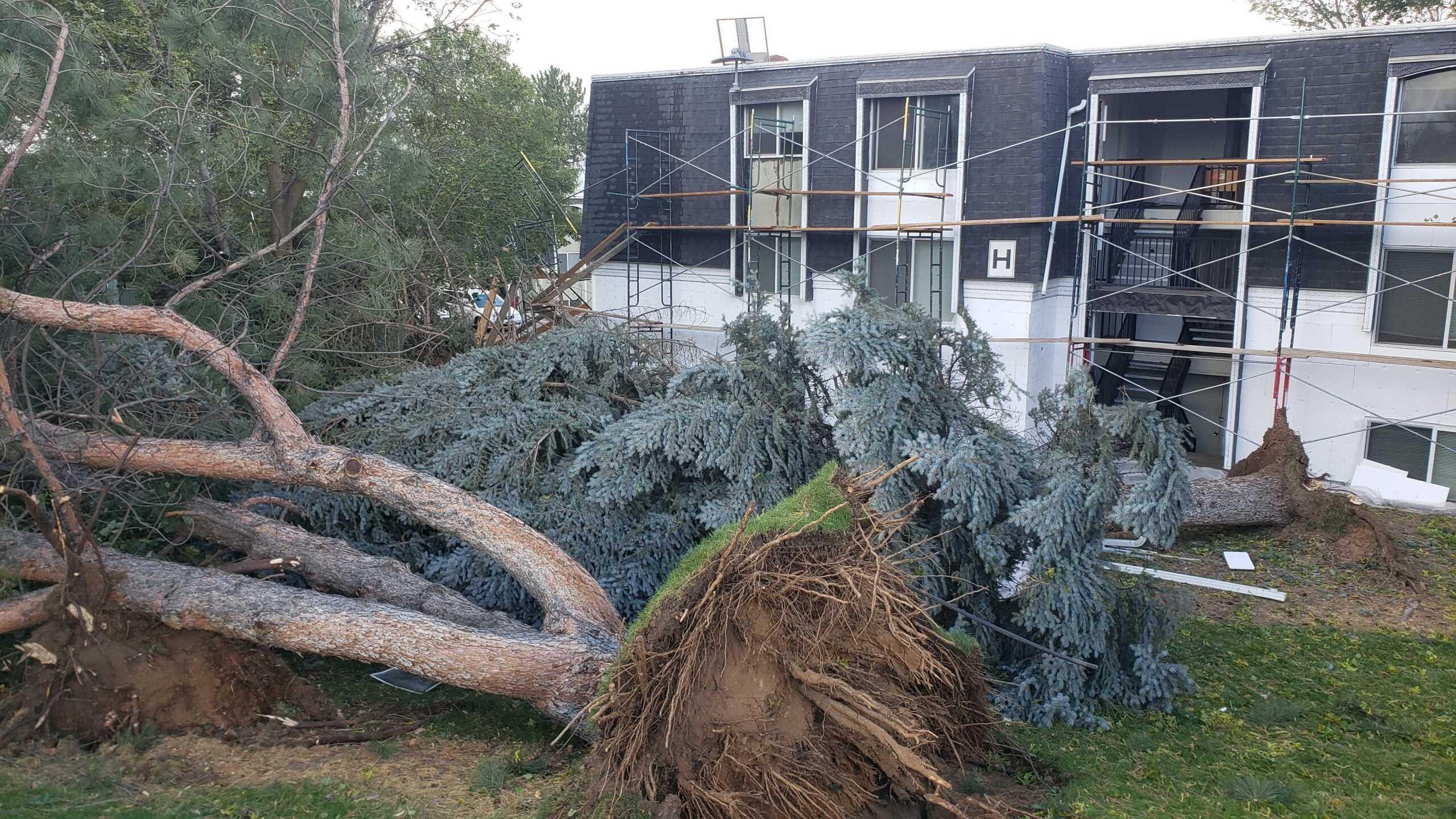 Wind Damage in Ogden (8).jpg