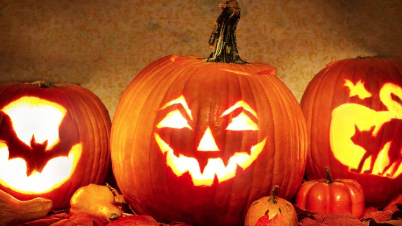 pumpkin nature walk halloween glen