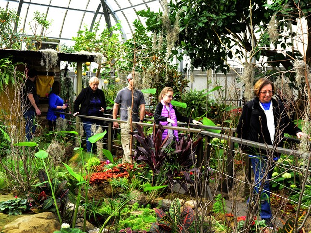 Krohn Conservatory's spring show, Blooms on the Bayou