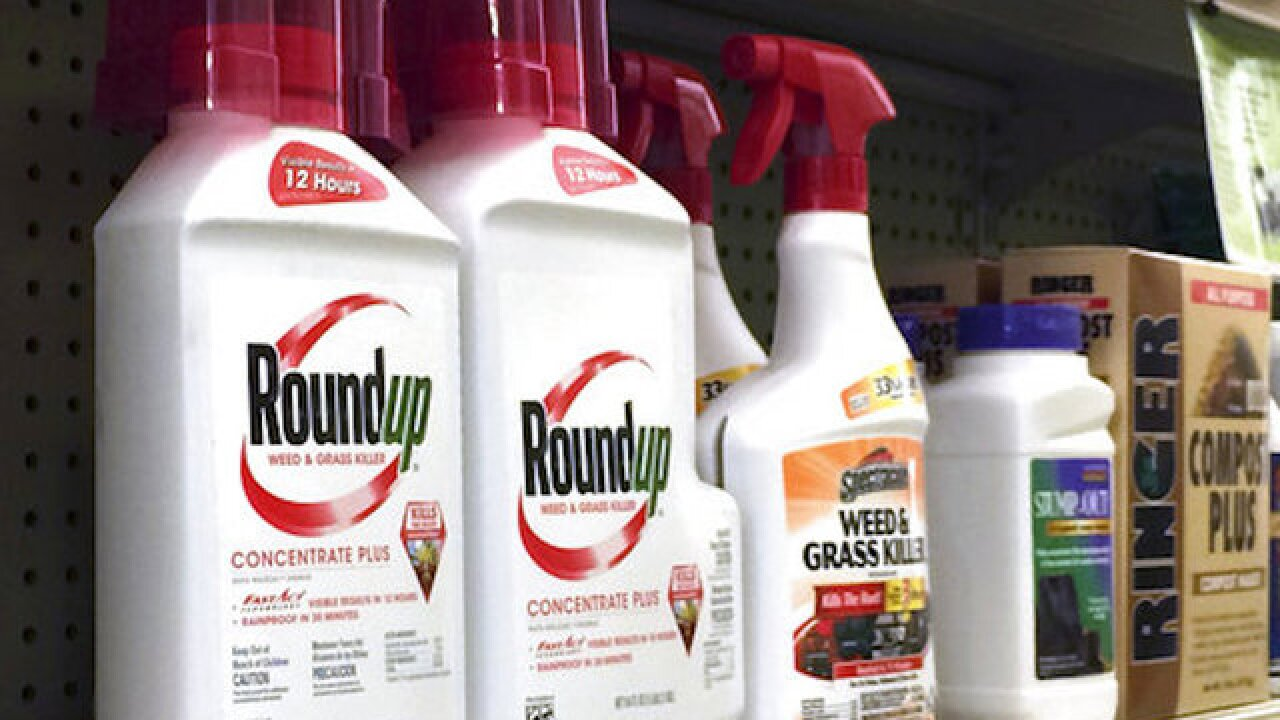 Judge: Experts can testify that Roundup linked to cancer