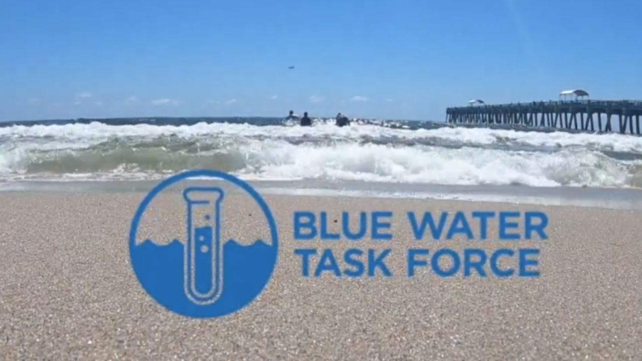 wptv blue water task force.PNG