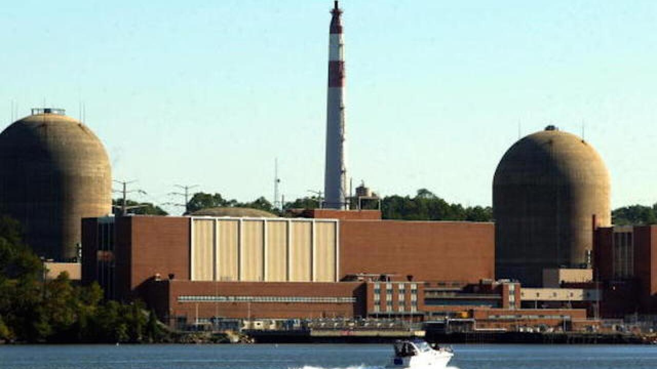 Bird poop apparently caused NY nuclear reactor outage