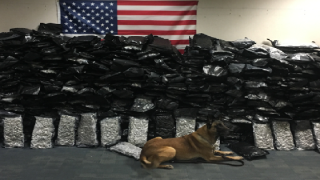 Florida Highway Patrol K-9 finds over 600 pounds of weed in U-Haul truck.png