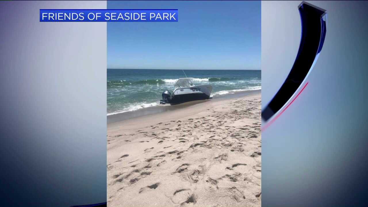 whale capsizes boat new jersey