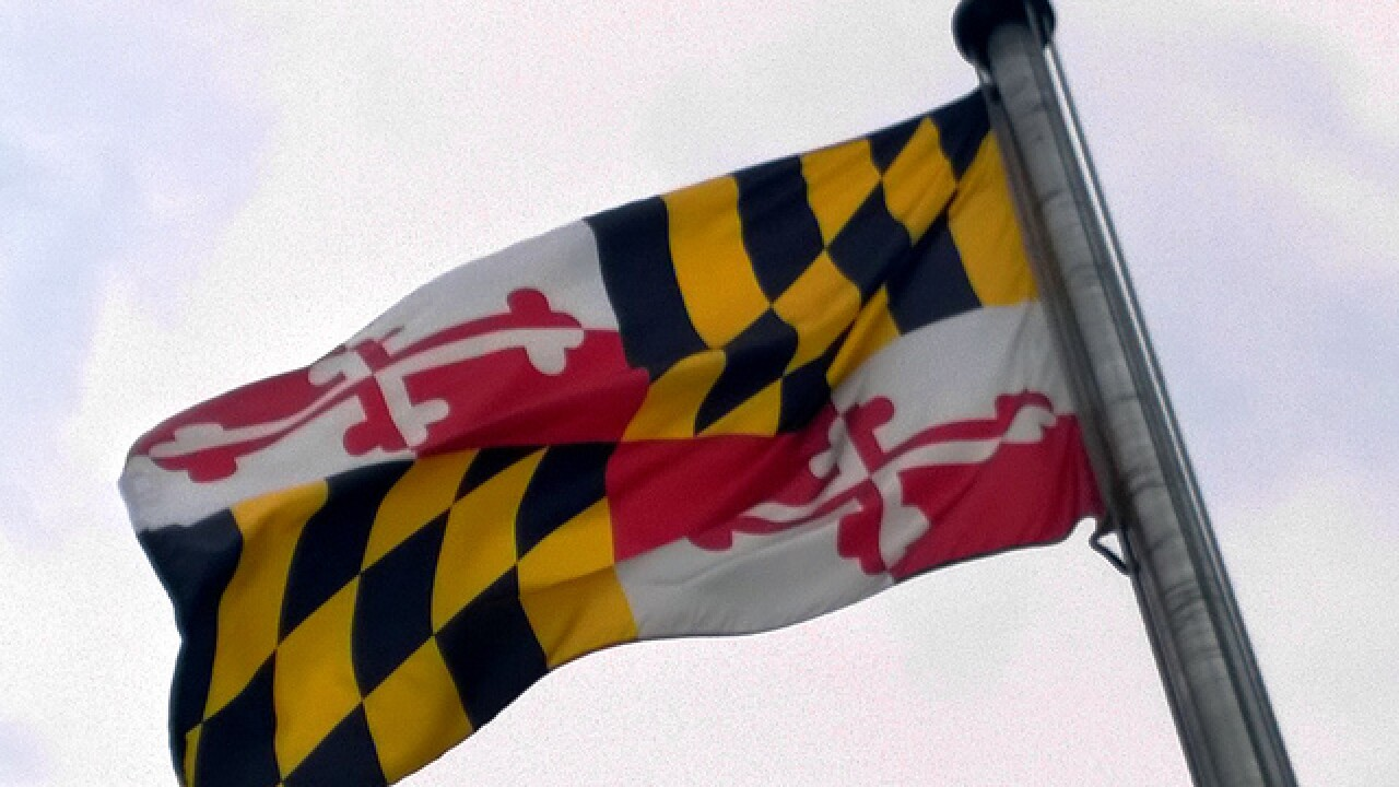 Should Maryland change the state flag?