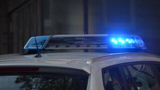 Generic Police Lights (1).jpg