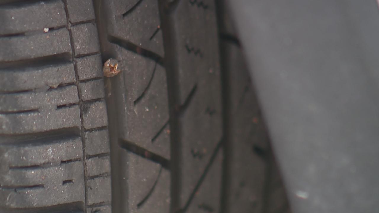 Raintree Lake tire issue Lee's Summit