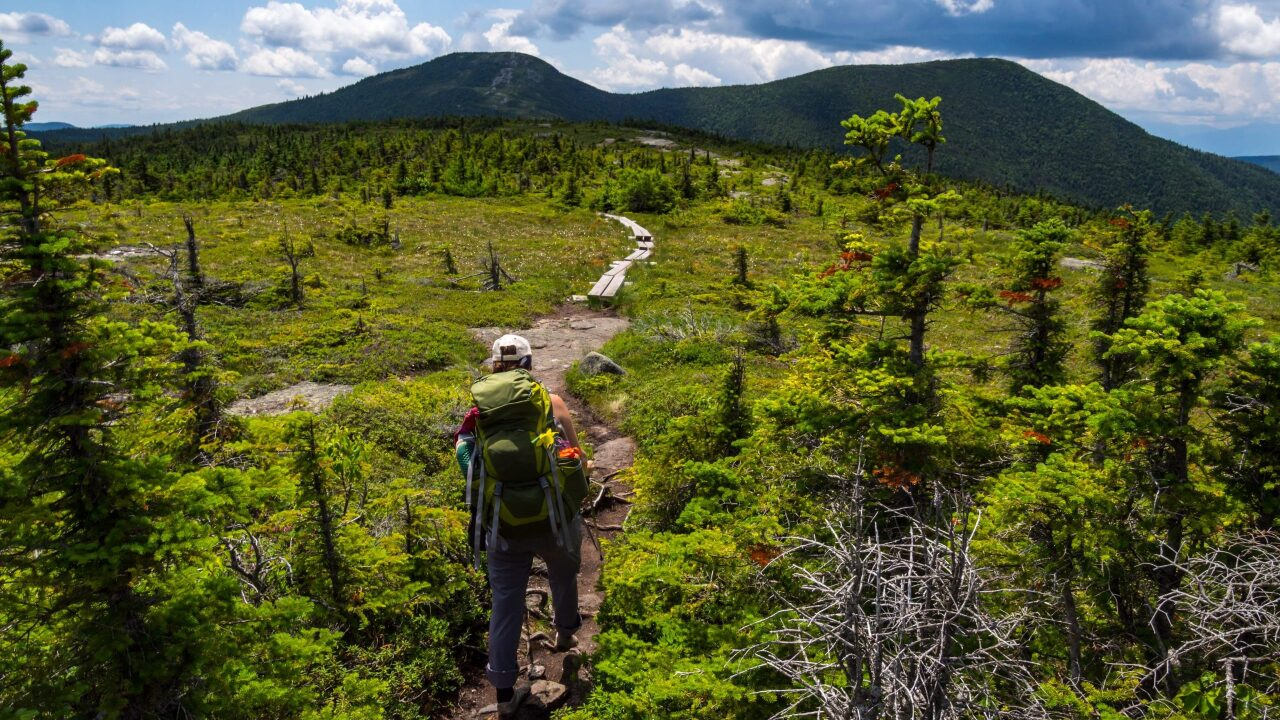 Get paid $20,000 plus free beer to hike the Appalachian Trail