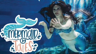 CMA Mermaids.png