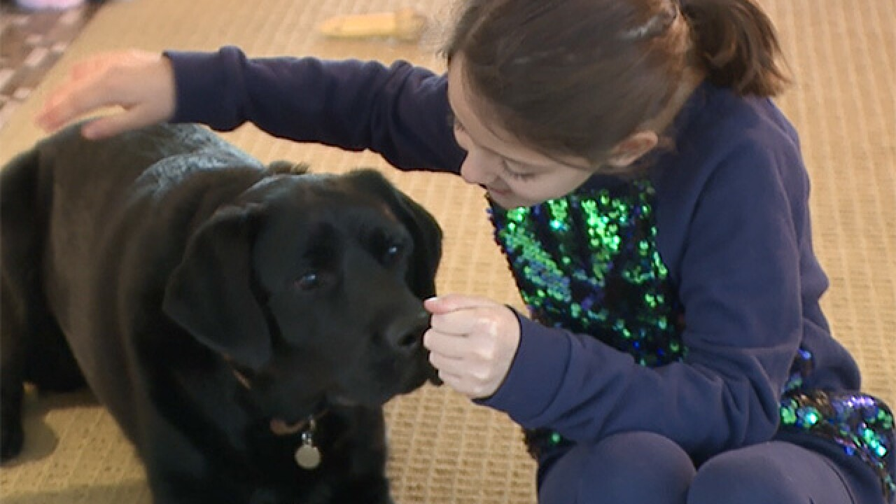 4th-grader petitions Labrador to be state dog