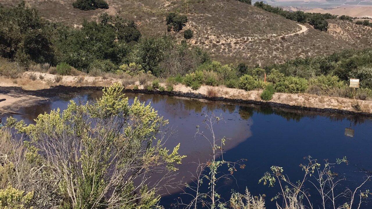 bell oil spill 3.jfif