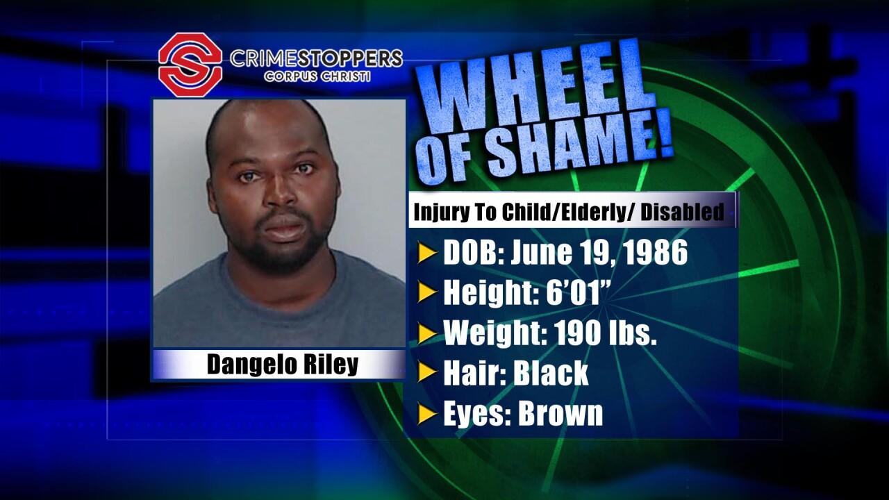 Wheel Of Shame Fugitive: Dangelo Riley