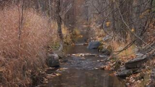 Montana Ag Network: Ranch works to restore creek