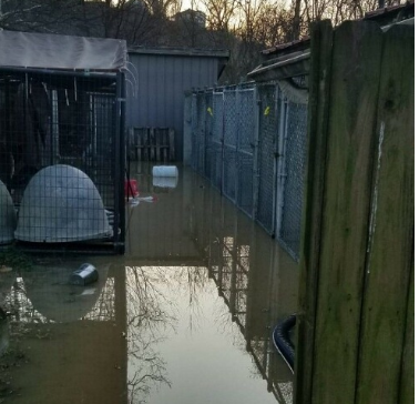 Franklin County humane society flooded.PNG