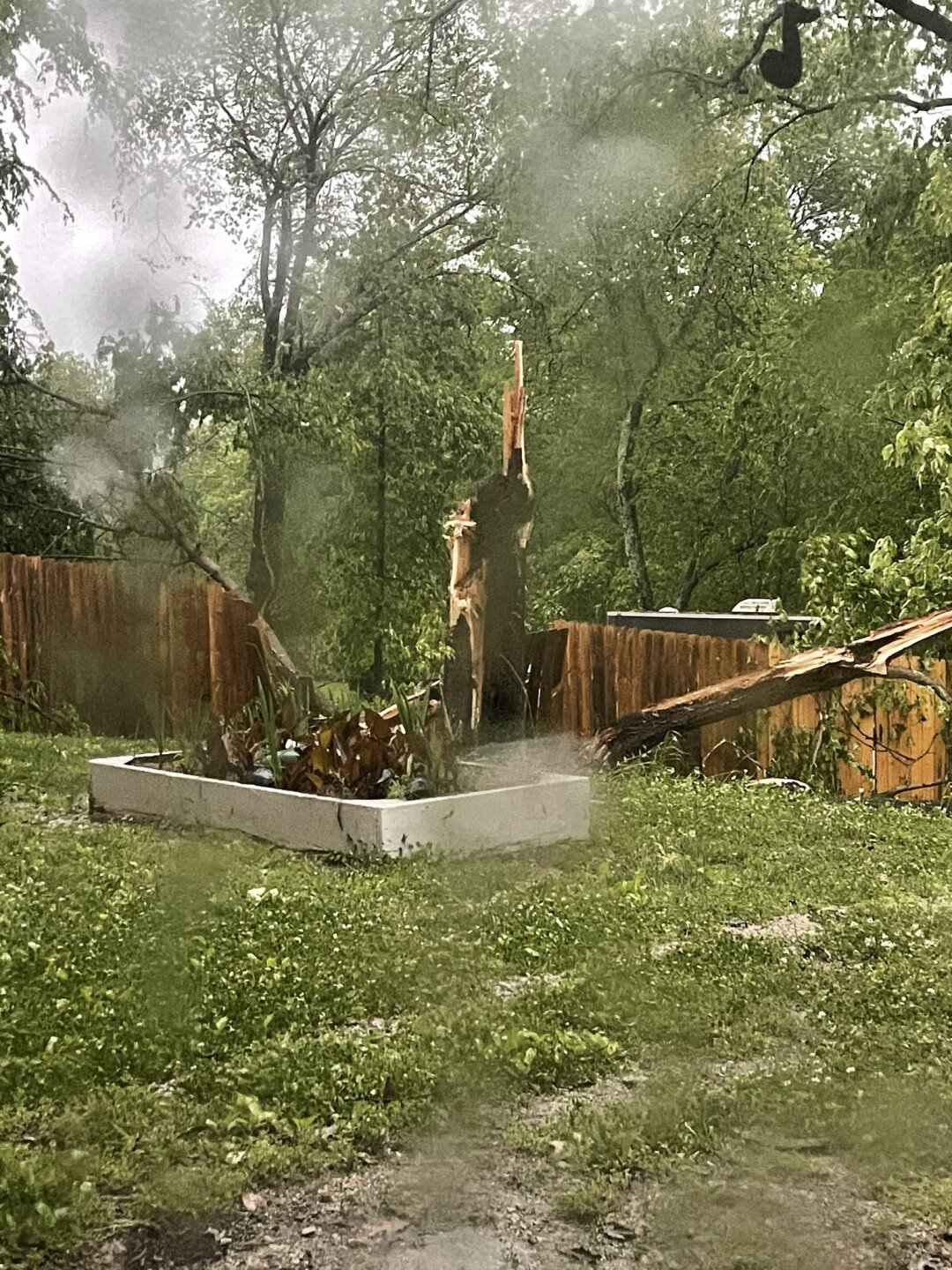 Goodlettsville snapped tree