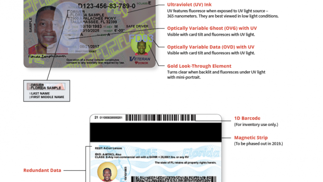 Florida driver licenses to get new design 1
