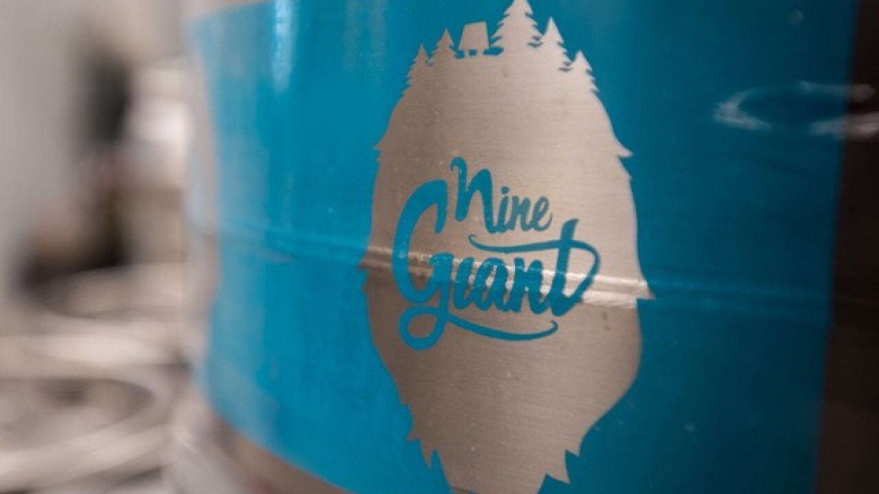 New Pleasant Ridge gastropub Nine Giant looks to appeal to both beer fans, foodies