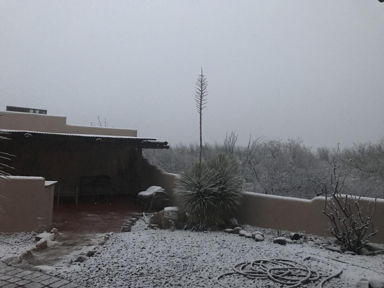 D SNOW 2.png