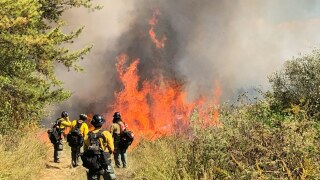 Daniel Boone fire