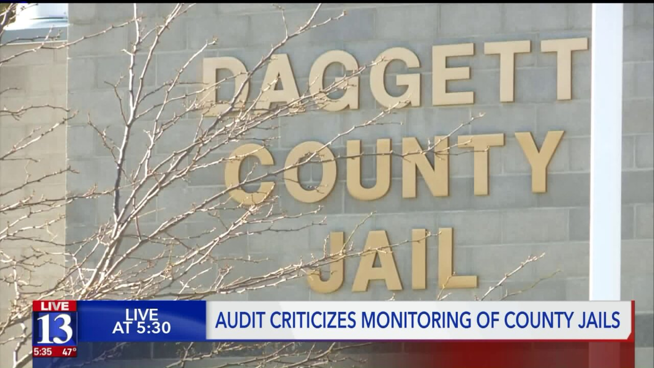 Newly-released audit shows state 'fails' inmates in county jails