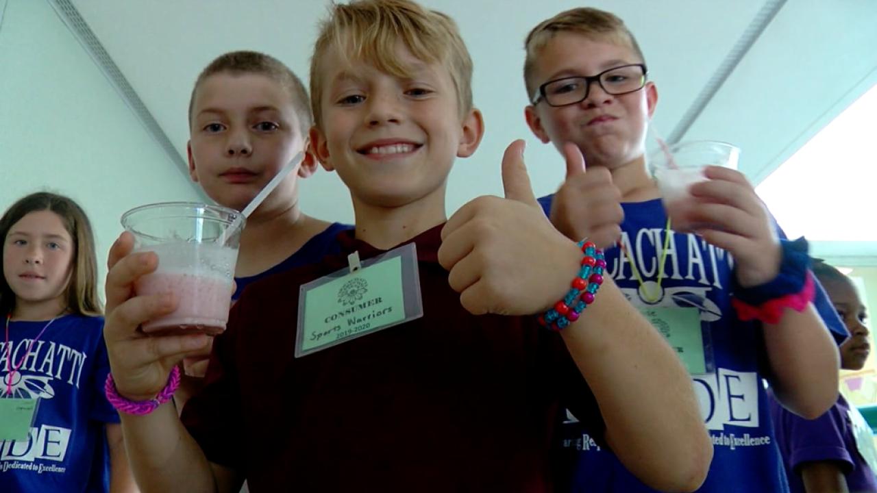 Micro Society Chocachatti Elementary