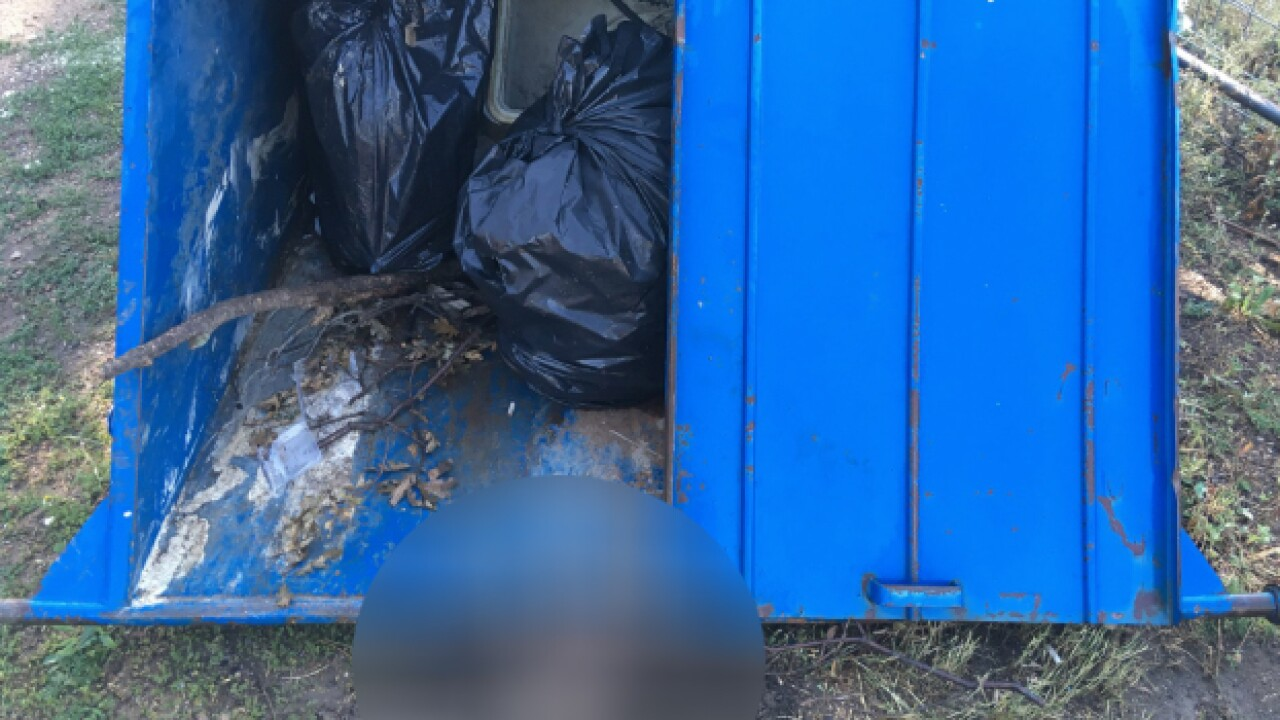 A 30-pound bear cub in Colorado was crushed to death by an unlocked dumpster