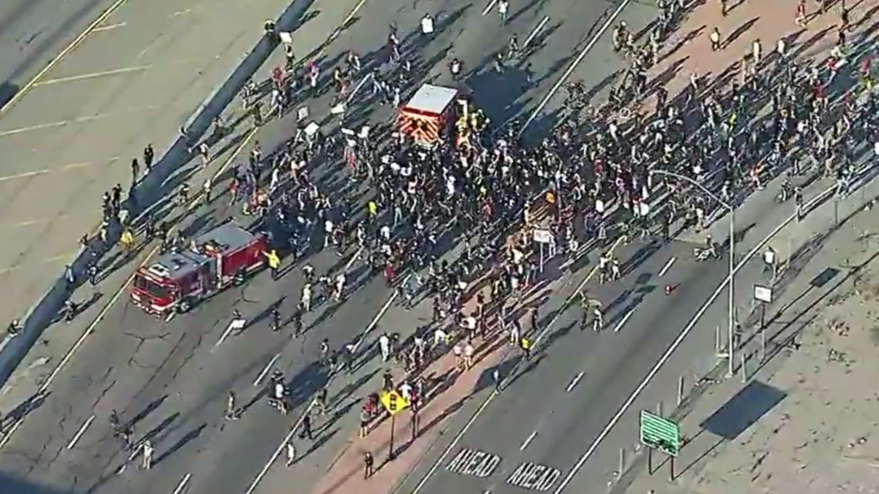 Use of force protesters shut down LA highway following death of George Floyd