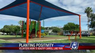 Carroll Lane Park's new shaded area