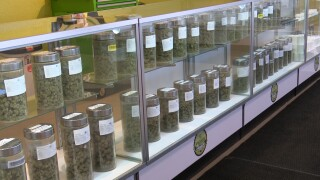 """Montana medical marijuana patients to be """"untethered"""" from providers June 2"""