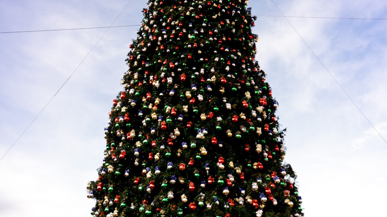 Outlets at Anthem Tree Display in Daylight.jpg