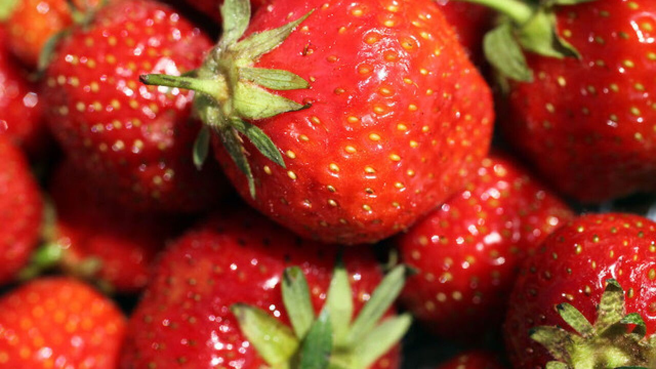 Strawberries contaminated with needles and pins leads to federal probe in Australia