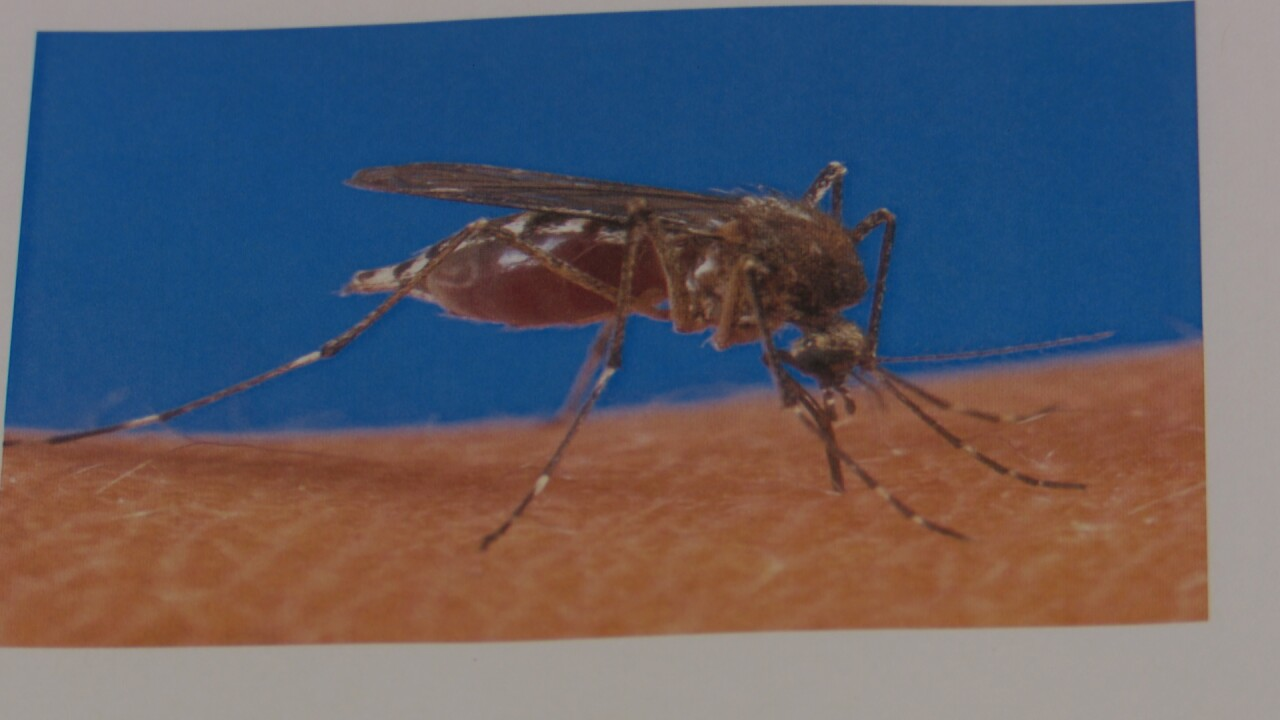 Health leaders respond to first human West Nile case of year