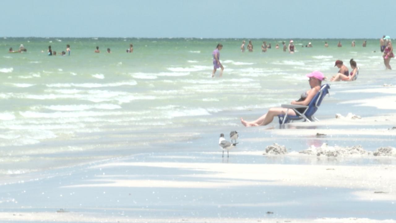 pinellas beaches-beach (3).png