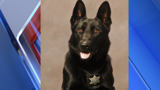 K9 locates electronics stolen during armed robbery in Kalamazoo County