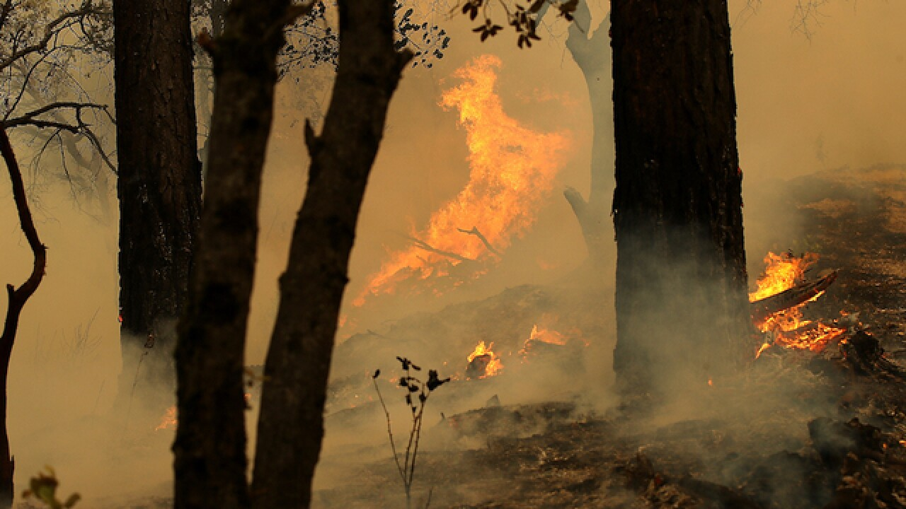 Deadly California wildfire kills missing children and great-grandmother, family says