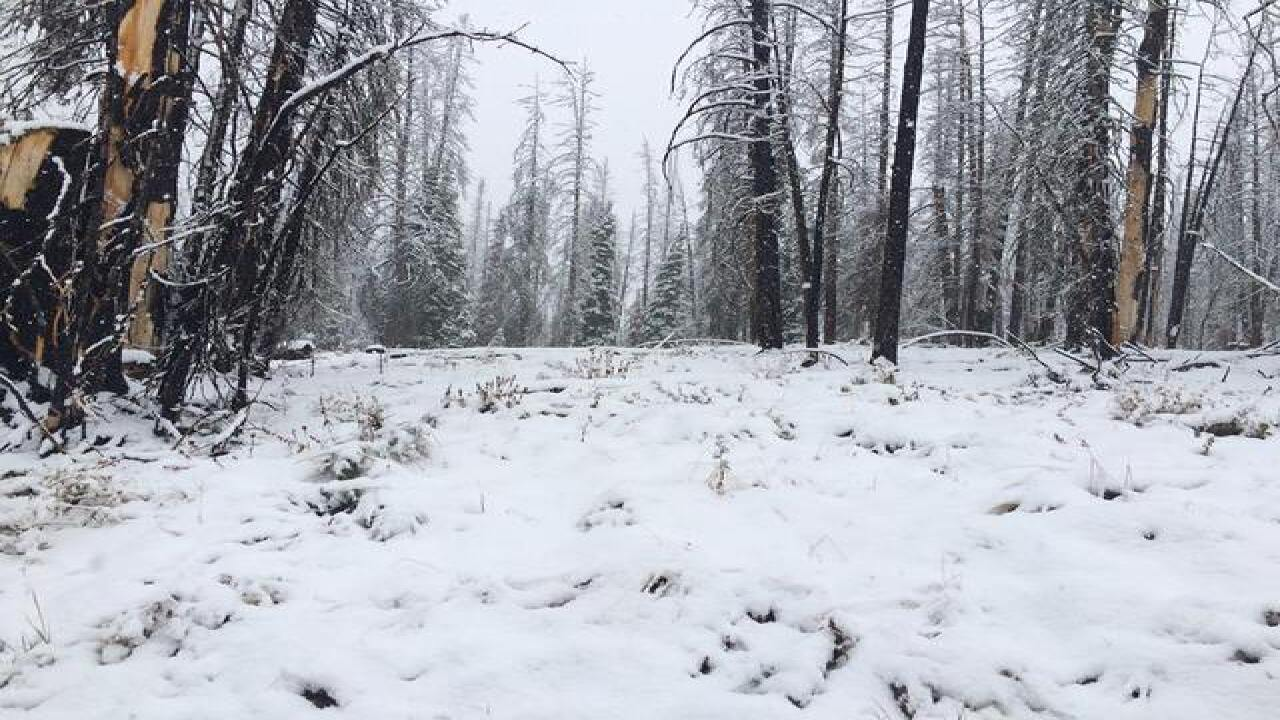 Snow hits Idaho