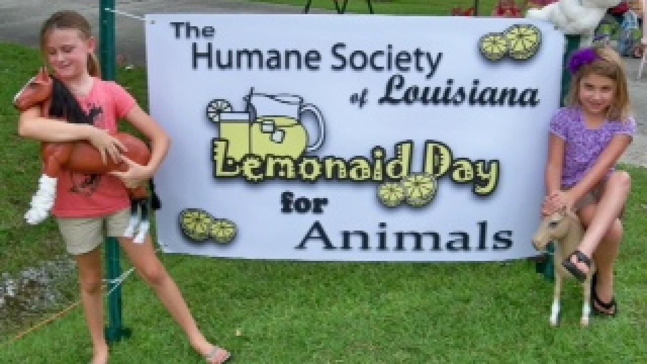 Courtesy Humane Society of Louisiana