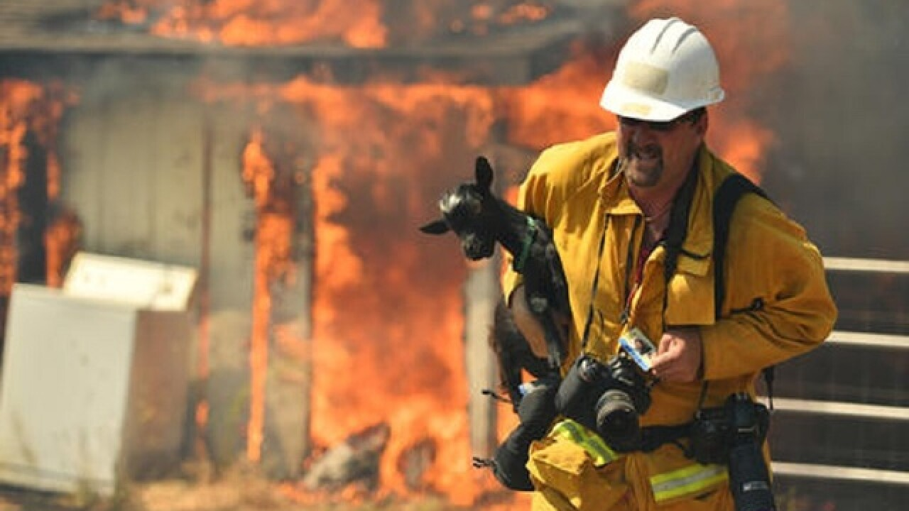 Calif. wildfire destroys homes as it reaches town of 1,200