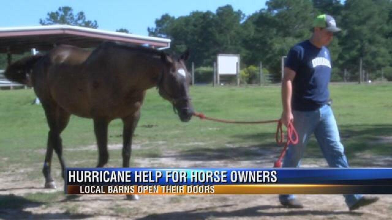 Horse Owners on Atlantic Coast Prepare for Hurricane Matthew