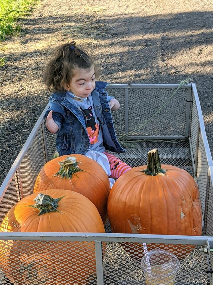 Aubrey in pumpkin patch.