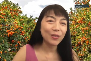 Geneticist Hailing Jin