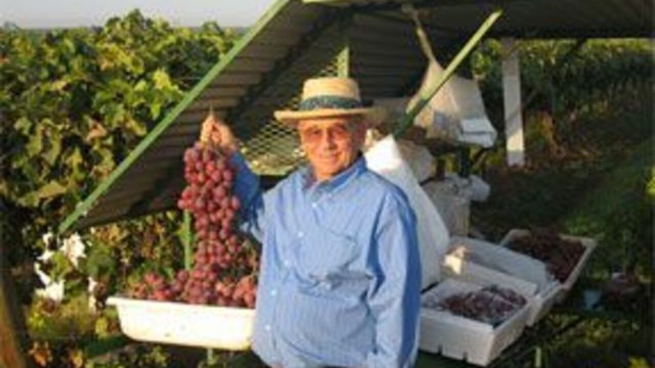 85-year-old grape grower killed; man arrested