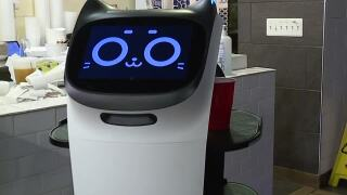 Madison Heights restaurant brings in robots amid worker shortage