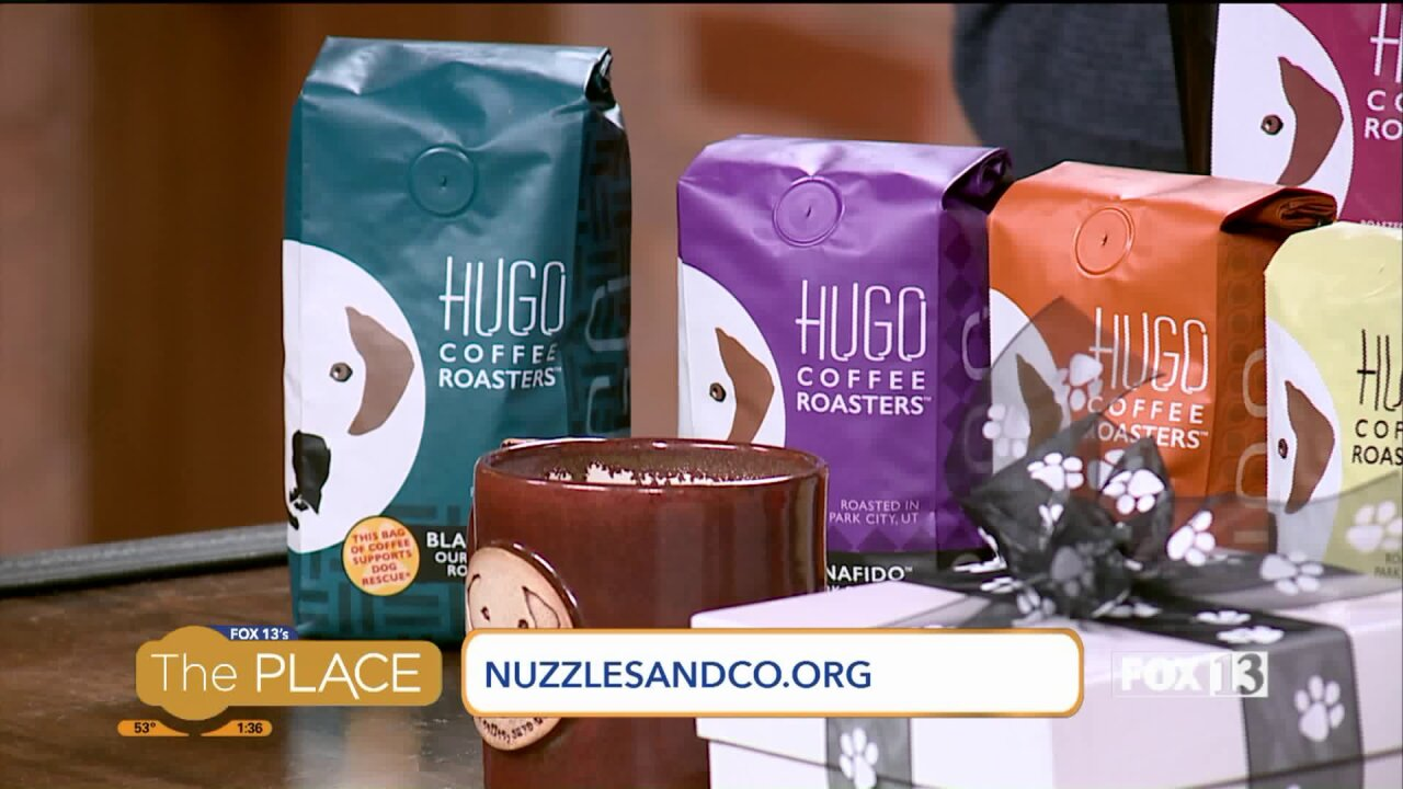 How 'coffee with a paws' helps homelesspets